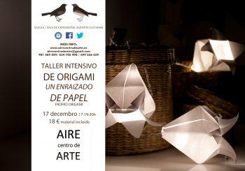 Unha raizame de papel. Taller de Origami